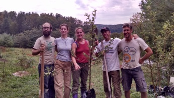 orchard helpers
